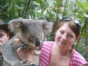 KO koala